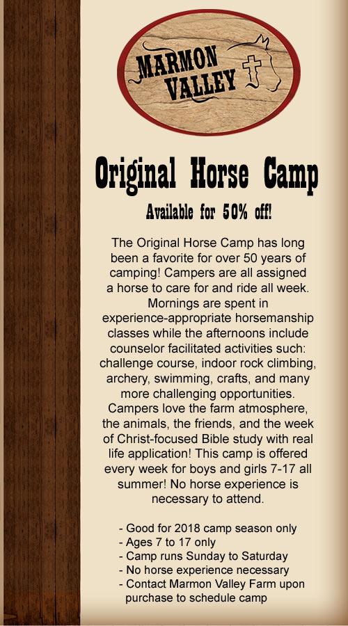 original-horse-camp-2017.jpg